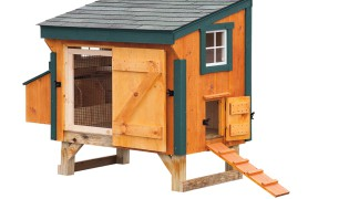 3' x 5' Lean-To with 3 Nesting Boxes 7-9 Chickens